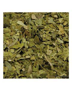 Ginkgo-Biloba-Blätter